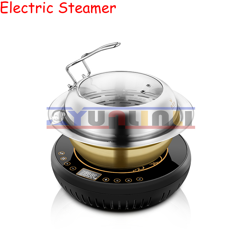 Multifunction Electric Steamers Household Steaming&Boiling Multifunctional Electric Steam Boiler Commercial Sauna Pot ZDH-KJ-2 multifunction electric steamers household steaming