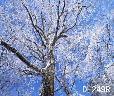 ФОТО Free digital winter vinyl Backdrops, children christmas blue photography D-249,10x10ft Wedding Photo Backdrops