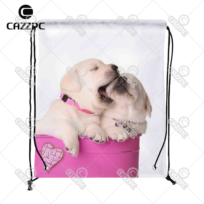Cute Valentine Puppies Dog Pet In A Pink Container A Heart