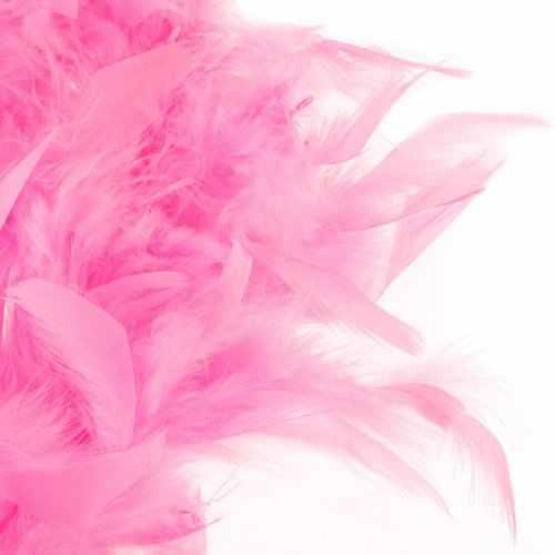 LHBL 2 メートルの羽のボアふわふわクラフトコスチュームドレスアップウェディングパーティー家の装飾 (ピンク)