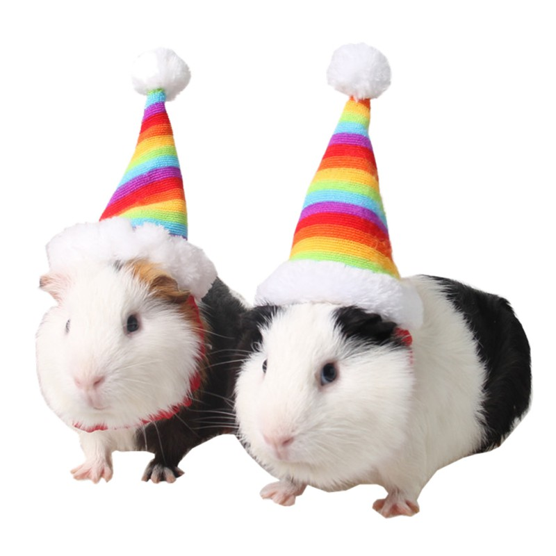Hamster Christmas Hat Rat Cap Cotton Filled Knit Pompom Hat With Adjustable Elastic Band Small Animals Rainbow Hat