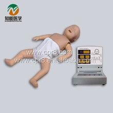 BIX/CPR160 Senior Infant CPR Manikin Models W096