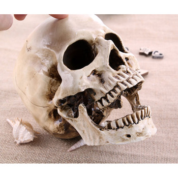 P-Flame big skull sculpture crafts medical painting film shooting professional mold  Halloween home decoration 1
