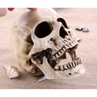 P-Flame big skull sculpture crafts medical painting film shooting professional mold Halloween home decoration
