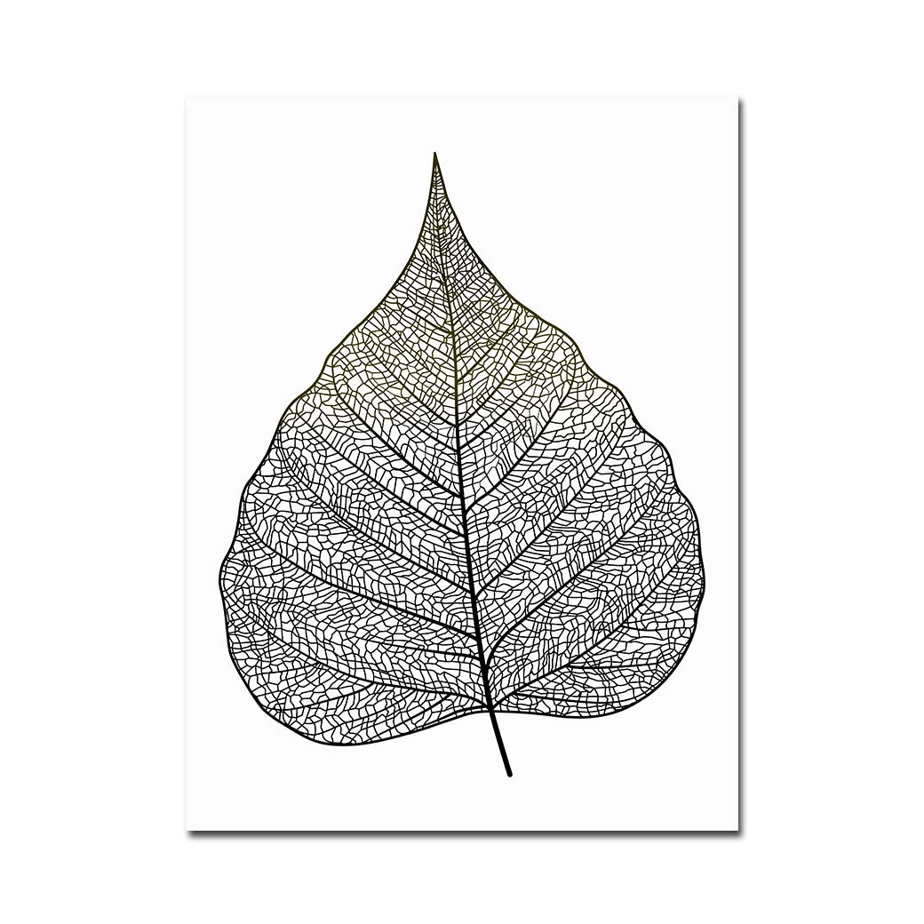 Abstract Art In Fall Leaves Black And White