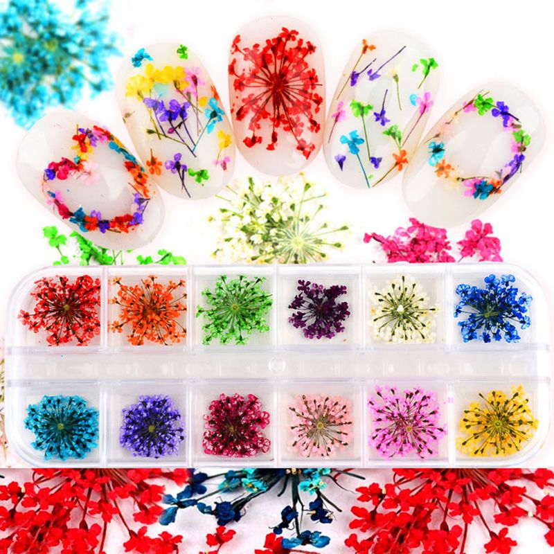 24Pcs Real Pressed Flower Anne's Lace Dried Flower Nail Art Resin  Crystal Epoxy Filler Jewelry Making Flower Diameter 1.5cm