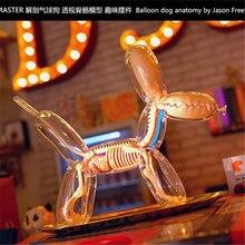 4D большой шар собака интеллект сборка игрушка перспективная анатомическая модель DIY популярная научная техника