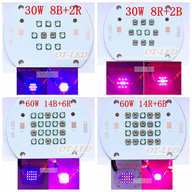 30W 60W Plant Grow LED light  Cree + Epileds  Led Emitter Light  630nm red 450NM Royal Blue for  indoor garden plant