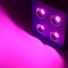 Dominator 800W COB LED Grow Light lamps Red/Blue/White/UV/IR For hydroponics and indoor plants