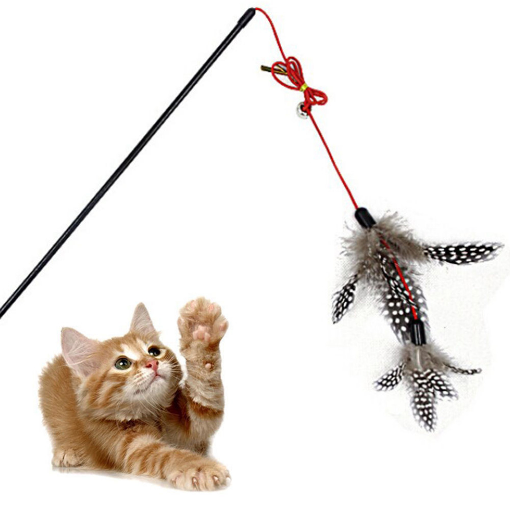 Top quality Pet cat toy Cute Design bird Feather Teaser Wand Plastic Toy for cats Color Multi Products For pet Free shipping