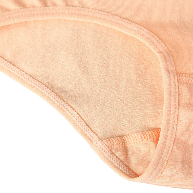 High Rise Cotton Briefs for Women