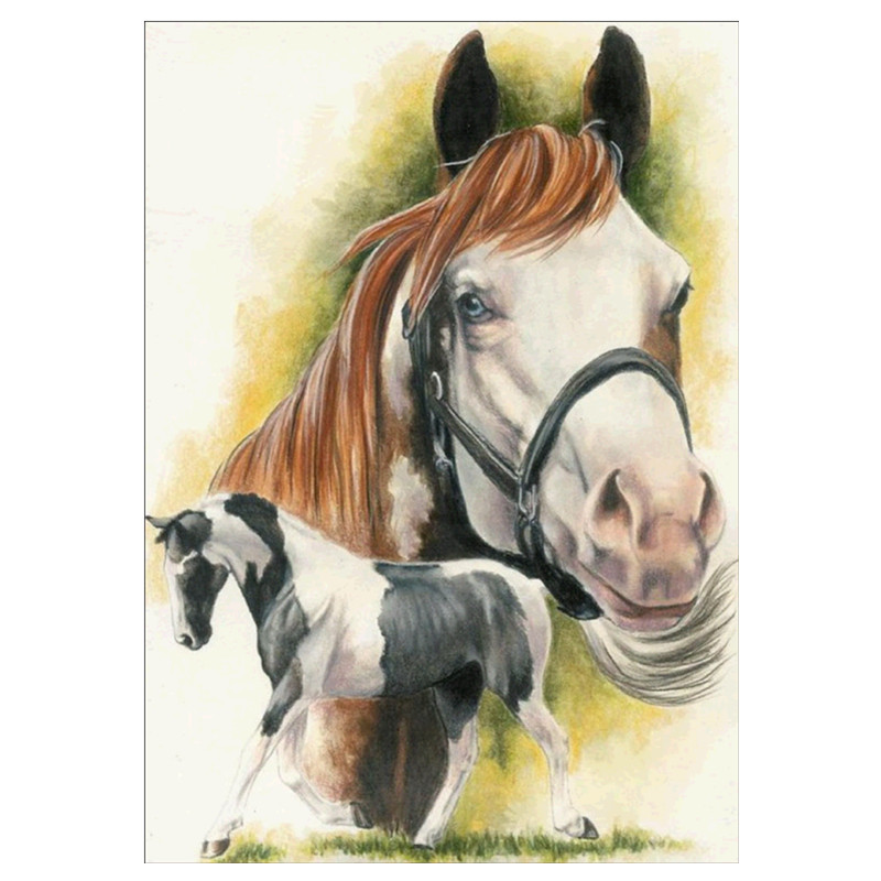 5D DIY Diamond Painting Horse Animal Full Circle Diamond Embroidered Cross Stitch Diamond Home Decor in Diamond Painting Cross Stitch from Home Garden