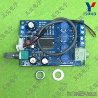 YAMAHA 20W Digital Power Amplifier Power Amplifier Board Plate Effect Of Super TA2024 Amp Optional Dual