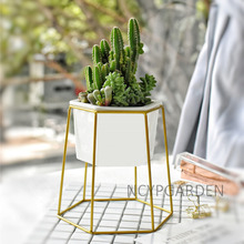 Desktop Decoration Geometric Gold Iron Rack Holder White Small Ceramic Planter Ceramic Succulents Herb Pot Plant Flower Pot Set