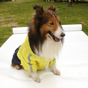 New arrival large dog fashion rain jackets clothes big dogs raincoats costume pet accessories hoodies pets clothing 1pcs L-XXXL 3