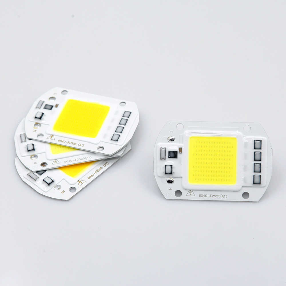 YNL COB LED Lamp 50W 30W 20W LED Bulb 220V Input Smart IC Fit No Driver High Lumens For DIY LED Flood Light Spotlight