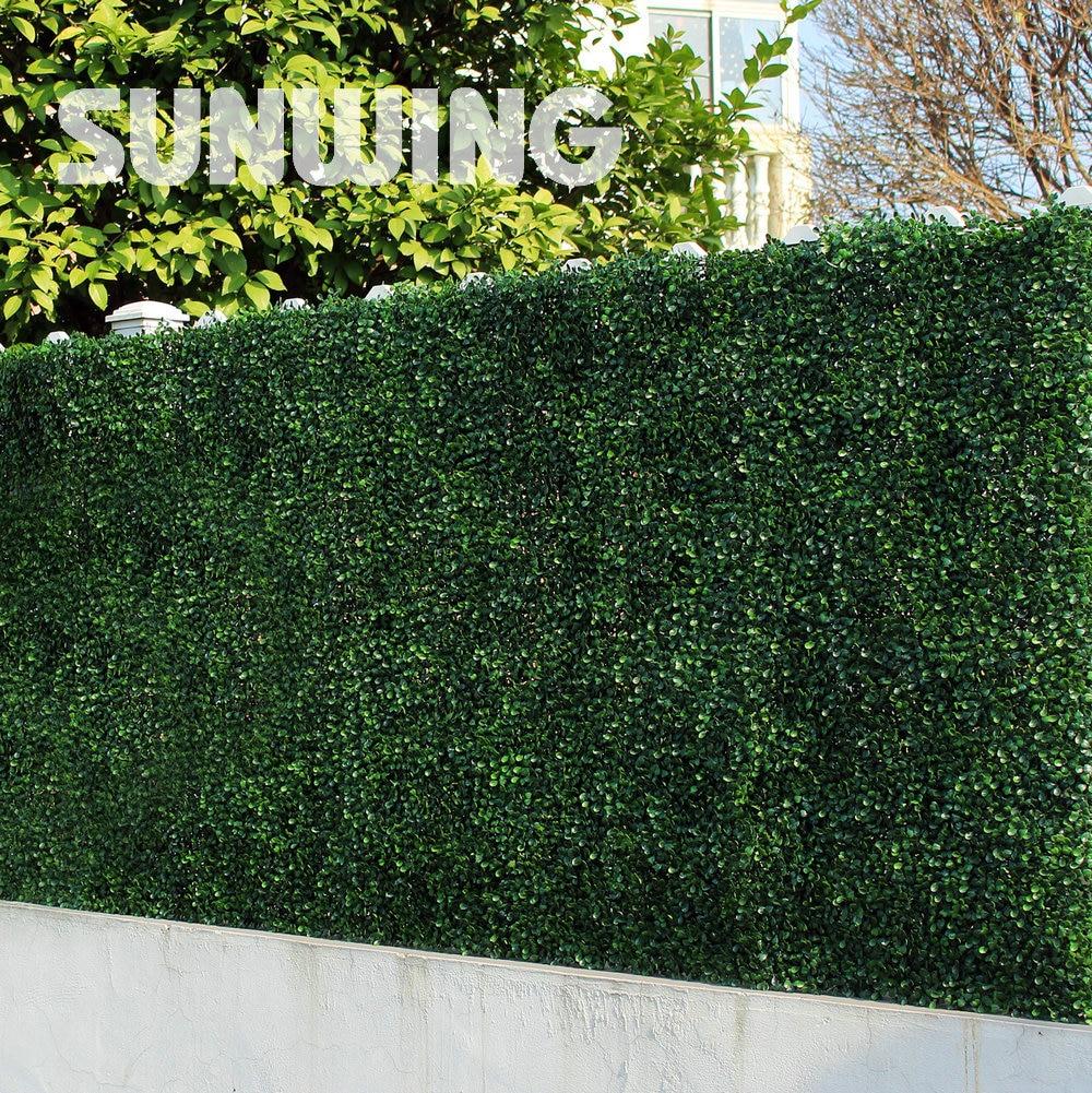 Plant hedges promotion shop for promotional plant hedges for Outdoor decorative plants