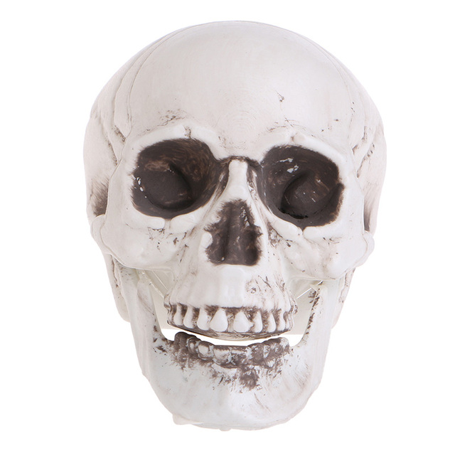 mini halloween decoration horror plastic decor prop skeleton head halloween props coffee bars ornament - Halloween Skeleton Head