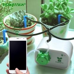 Control de teléfono móvil inteligente automático jardín riego suculentas planta de riego por goteo herramienta bomba de agua sistema de temporizador
