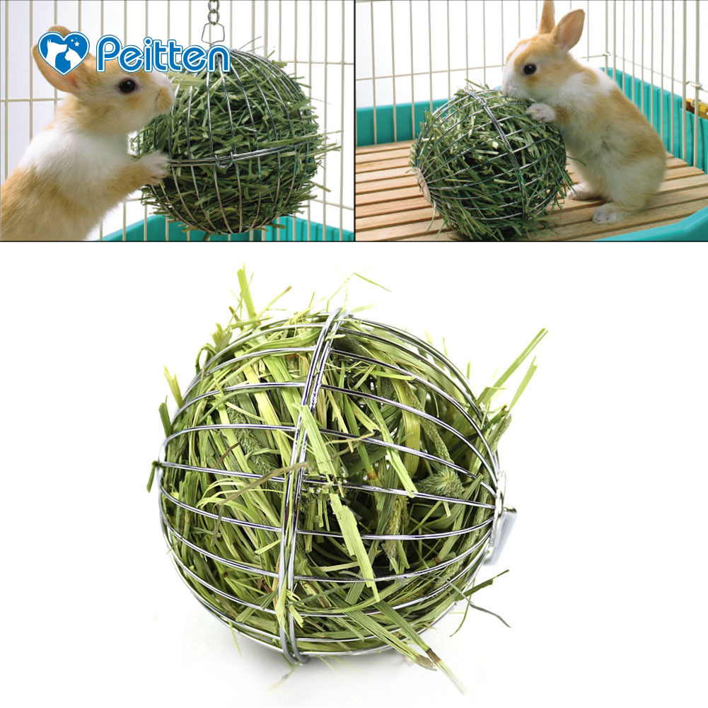 Stainless Steel Electroplated Round Sphere Grass Collecting Ball For Feeding Chinchilla Rabbit Guinea Pig And Other Pets 2018