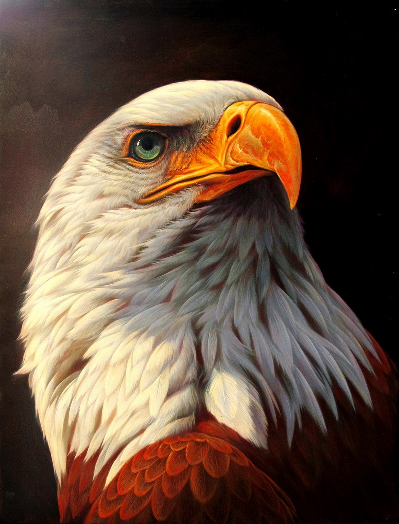 Free Shipping Hd Print Oil Painting Animals Bald