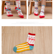 Funny cotton socks wholesale spring and autumn flame bird tube personalized Spring