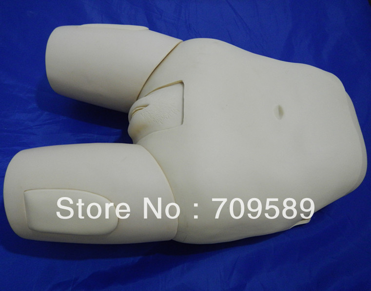 ISO Advanced Female Catheterization Model, Catheterization trainer, Catheterization Training Simulator transparent female catheterization simulator urinary catheterization model