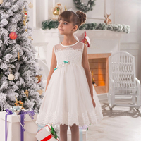 Diverso Estilo Del Desfile de Flores Niña Vestidos de Encaje Apliques Sin Mangas Volantes Cinturón Pequeña Princesa Tulle Vestidos de Bola de Navidad 12