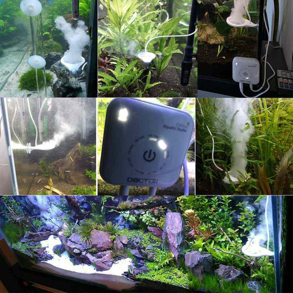3. Generacja Chihiros Doctor Brown/Silk algi Remover Twinstar roślina ryba krewetki środek do czyszczenia akwarium czyszczenie materiały eksploatacyjne