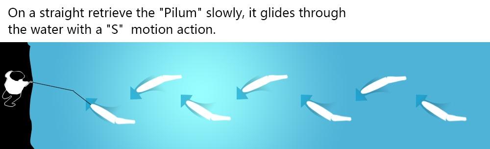 CF motion activity