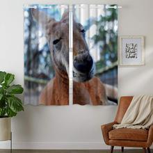 Blackout Curtains Darkening 2 Panels Grommet Window Curtain for Bedroom Lazy Donkey Animal Close-Up цена