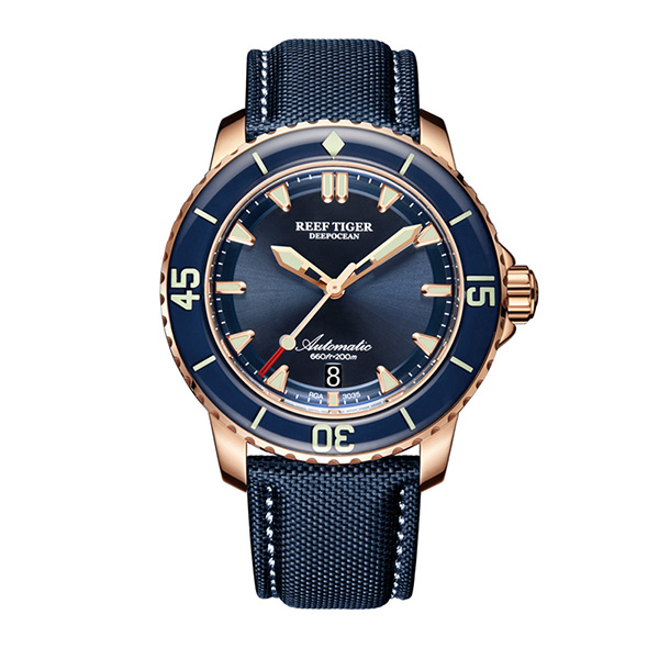 Reef Tiger Aurora Serier RGA3035 Men 200M Waterproof With Super Luminous Single Calendar Automatic Mechanical Wrist