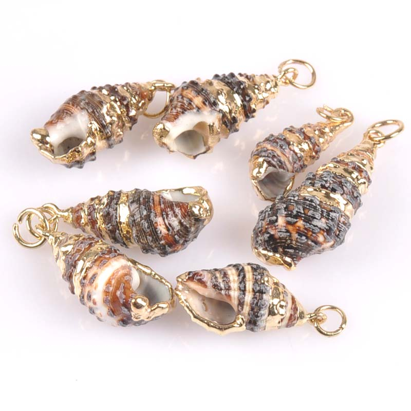 18-25mm Natural Spiral Shell Gold Plated For DIY Handmade Pendant SeaShells Home Decoration 5pcs TRS0218X