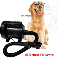 NEW Cheap Dog Grooming Dryer Pet Hair Dryer Blower 1600w Mute Pet Blowing Machine with 2 Nozzles For Dog and Cats Sale