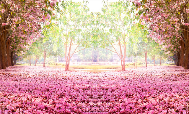 Online shop 7x5ft pink flowers tree path green garden petals floor 7x5ft pink flowers tree path green garden petals floor daylight park custom photo background studio backdrop vinyl 220cm x 150cm mightylinksfo