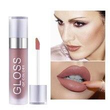 15 cores maquiagem profissional lipgloss veludo gloss lábio gloss à prova dwaterproof água fosco batom líquido longa duração fosco cosméticos tslm1