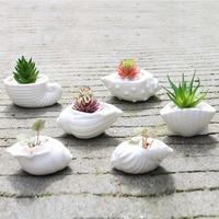 6pcs Set Mini White Small Flowerpot Shell Shape Ceramic Succulent Plant Pot Holder Fairy Garden Cactus