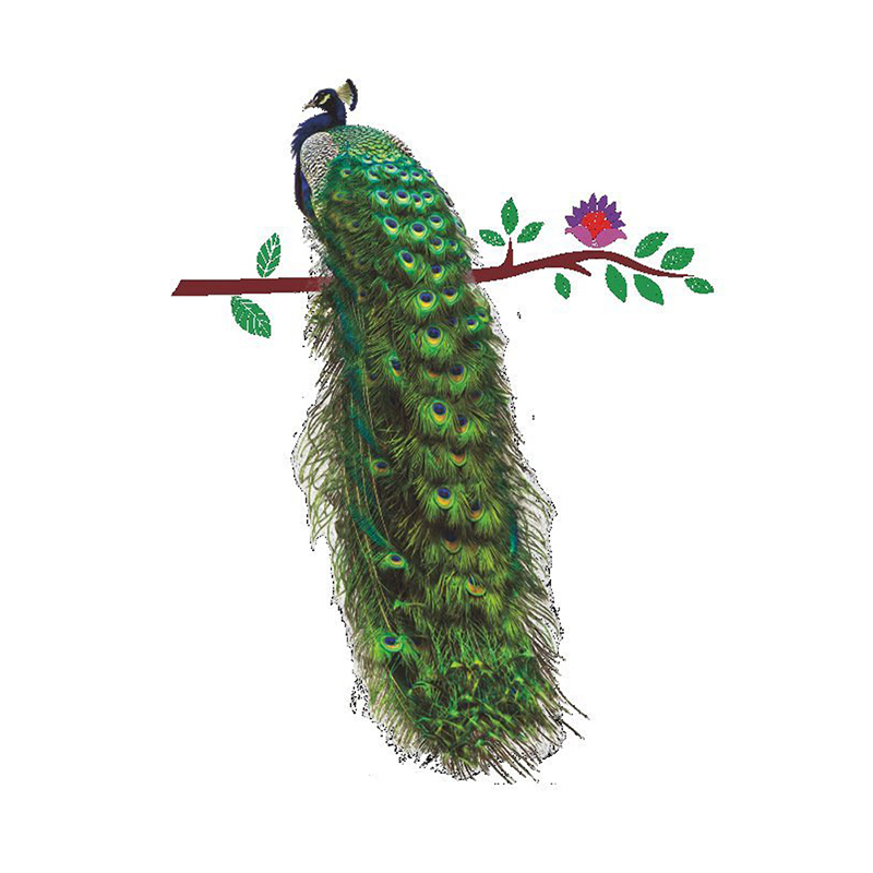 Beautiful Peacock Removable Mural Wall Sticker For Children Kids Bedroom Decor Decoration
