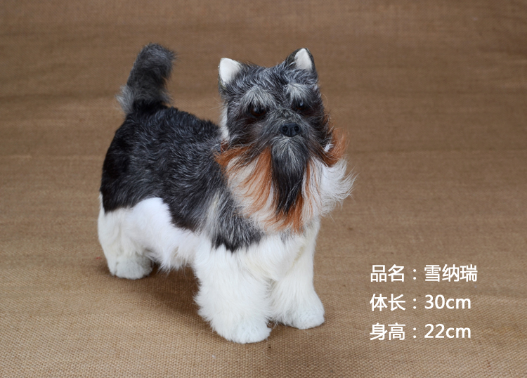 large 30x22cm simulation dog Schnauzer furry fur hard model home decoration gift h1158 large 24x24 cm simulation white cat with yellow head cat model lifelike big head squatting cat model decoration t187