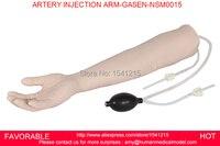 Venipuncture 주입 팔, 정맥 주입 팔, 완전한 venipuncture 팔, iv 훈련 모형, 동맥 주입 ARM-GASEN-NSM0015