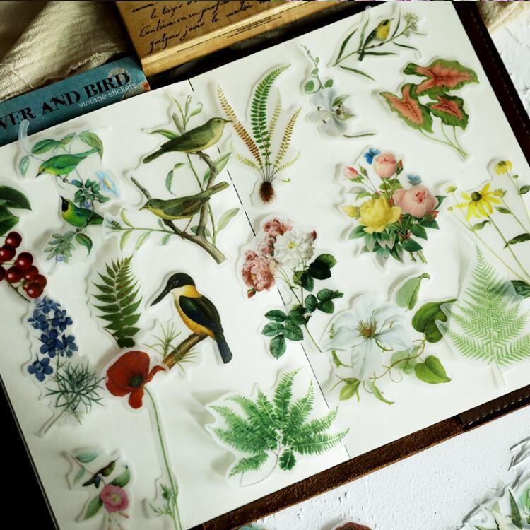 56 Pc Lot Flores Vintage Pajaros Plantas Pavo Real Ilustraciones