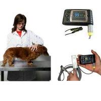 Schönheit & Gesundheit Gut Yonker Für Veterinär Haustiere Hund Katze Tierarzt Handheld Pulsoximeter Medizinische Tragbare Handheld Blut Sauerstoff Spo2 Sättigung Oxymetre