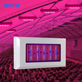 Guaranteed 100% 300W Full Spectrum Led Grow light For Plant 380nm-780nm LED Hydroponic Greenhouse Grow Tent 300W Plant Lamp