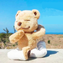04b6e75be8 37CM Soft Meddy Teddy American Yoga Bear PP Cotton Stuffed Plush Toy  Reshape Doll Variety Teddy