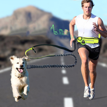 Dog Collars Harnesses Leads pet dog cat Waterproof pockets sports running traction rope Traction belt leash Pet Supplies