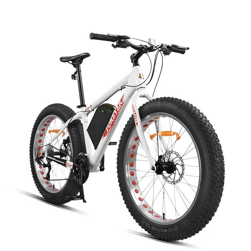Custom 26 inch Electric mountain bike fat tire electric snow