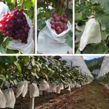 40Pcs Grape Protection Bag Anti Bird Non-woven Reusable Grow Mesh Pouch for Apple Fruit Vegetables