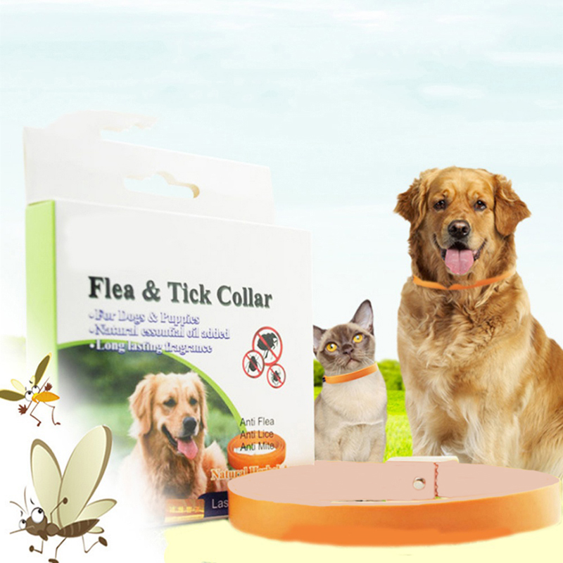 Dog Cat Anti Tick Fleas Chewing Lice Sarcoptic Mange Quick Kill Repel Remover Protection Collar Necklace 2018 Hot Sale