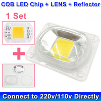 1 Set LED COB Lamp Bulb Chip Beads With LED Lens Reflector 230V 220V 110V 20W