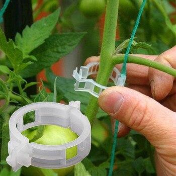 100PC plastikowe Trellis klipy pomidorowe obsługuje łączy rośliny winorośli Trellis sznurka klatki cieplarnianych Veggie roślina ogrodowa klip FDH